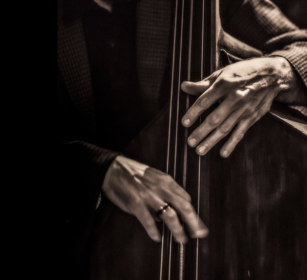 Image of hands playing a stand-up bass
