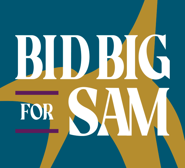 Teal, purple, and gold graphic that reads: Big Big for SAM