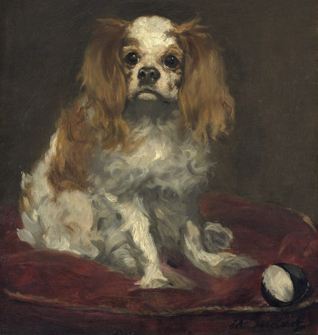A King Charles Spaniel by Manet